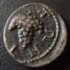 Photo numismatique  Monnaies Monnaies grecques Moesie inférieure Tomis, Moesia AE, AES, Bronze MOESIE INFERIEUR, MOESIA, TOMIS, AE 15 mm, Autonome 117-140, 2,68 grms, AMN GI 2/668/2553 TTB+ Rare!