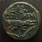 Photo numismatique  Monnaies Empire Romain AUGUSTE, AUGUSTUS, AUGUSTO Dupondius de Nîmes AUGUSTE et AGRIPPA, Dupondius de Nîmes, Nemausus, sans PP, crocodile enchainé à un palmier, 12,91 grms,  RPC.524 TTB+