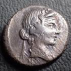 Photo numismatique  Monnaies République Romaine Titia 90 avant Jc Denier, denar, denario, denarius Q. TITIUS, denier Rome en 90 avant JC, tête jeune de Bacchus, Pégase, 17 mm, 3,80 grms, RSC.Titia 2, TB à TTB