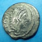 Photo numismatique  Monnaies République Romaine Thoria 105 avant Jc Denier, denar, denario, denarius L.THORIUS BALBUS, denier Rome en 105 avant JC, tête de Junon Sospiter, taureau chargeant, 19 mm, 3,45 grms, RSC Thoria 1, TB à TTB/TTB