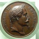 Photo numismatique  Monnaies Médailles 19ème siècle Médaille NAPOLEON III, 1858, société centrale d'agriculture des basses alpes, médaille en cuivre, coups sur tranche sinon SUPERBE