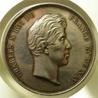 Photo numismatique  Monnaies Médailles Charles X Médaille CHARLES X, chambre des députés, medaille en argent 41 mm 1827, De Puymaurin Di. Et Dubois F., 1 coup sur tanche sinon SUPERBE