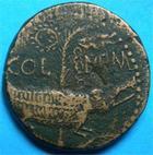 Photo numismatique  Monnaies Empire Romain AUGUSTE, AUGUSTUS, AUGUSTO Dupondius, dupondii NIMES AUGUSTE ET AGRIPPA dupondius,crocodiles attach�s � un palmier, C.8 P.TTB