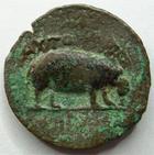 Photo numismatique  Monnaies Colonies Romaines Claude Ier 41.54 ap.Jc Diobole, diobol Alexandrie, Alexandria, Claude I, diobole 7.56 grammes, Hippopotame (Hippopotamus), Dattari.166 variante TB